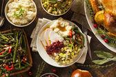 Domácí díkůvzdání krocana na talíři