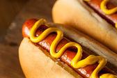 Grilování na roštu Hot Dog