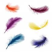 Set feathers