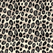Fotografie Leopard skin animal print seamless pattern in black and white, vector