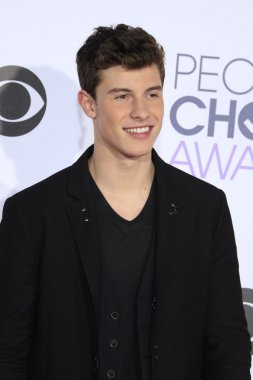 actor Shawn Mendes