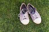 Fotografia Old worn sneakers on green grass