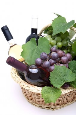 Bottles of white and red wine background