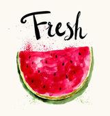 Hand drawn  watermelon