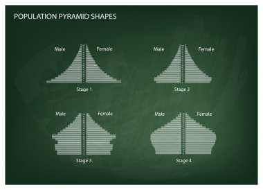 Four Types of Population Pyramids on Chalkboard Background