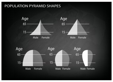 Different Types of Population Pyramids on Chalkboard Background