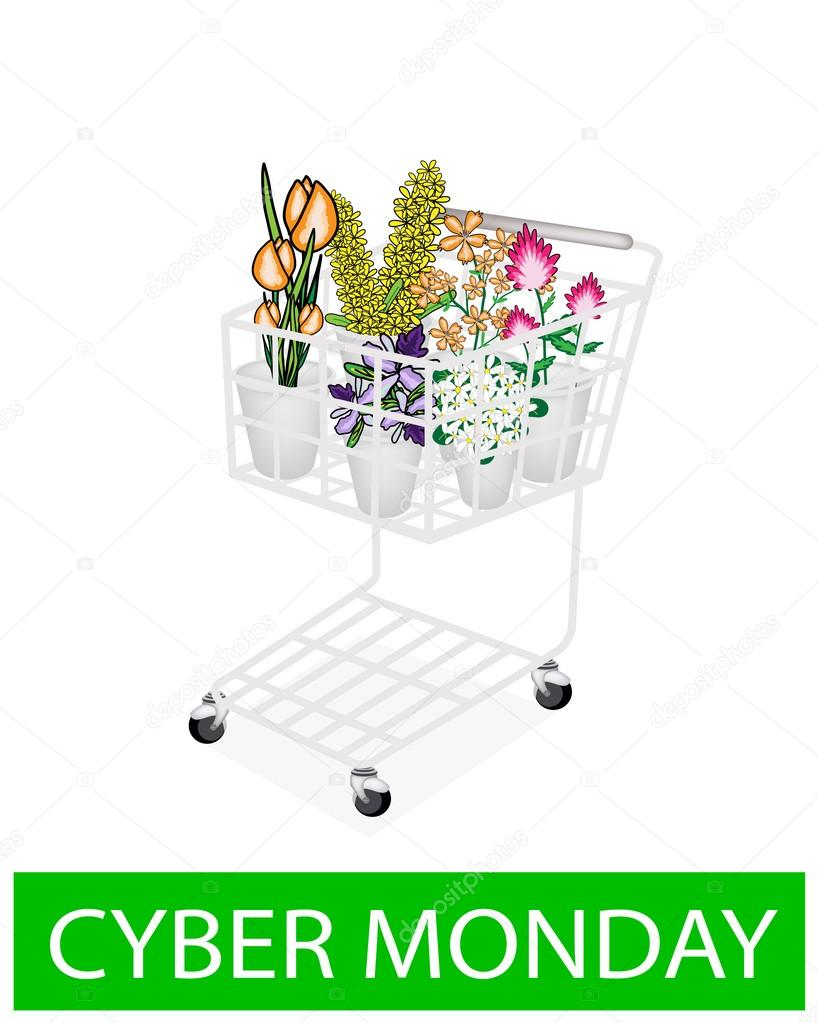 Flower and Orchid in Cyber Monday Shopping Cart