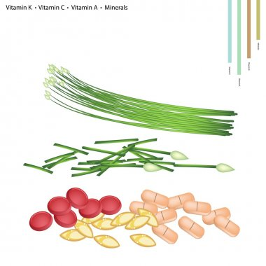 Garlic Chives with Vitamin K, C, A, B9 and Minerals