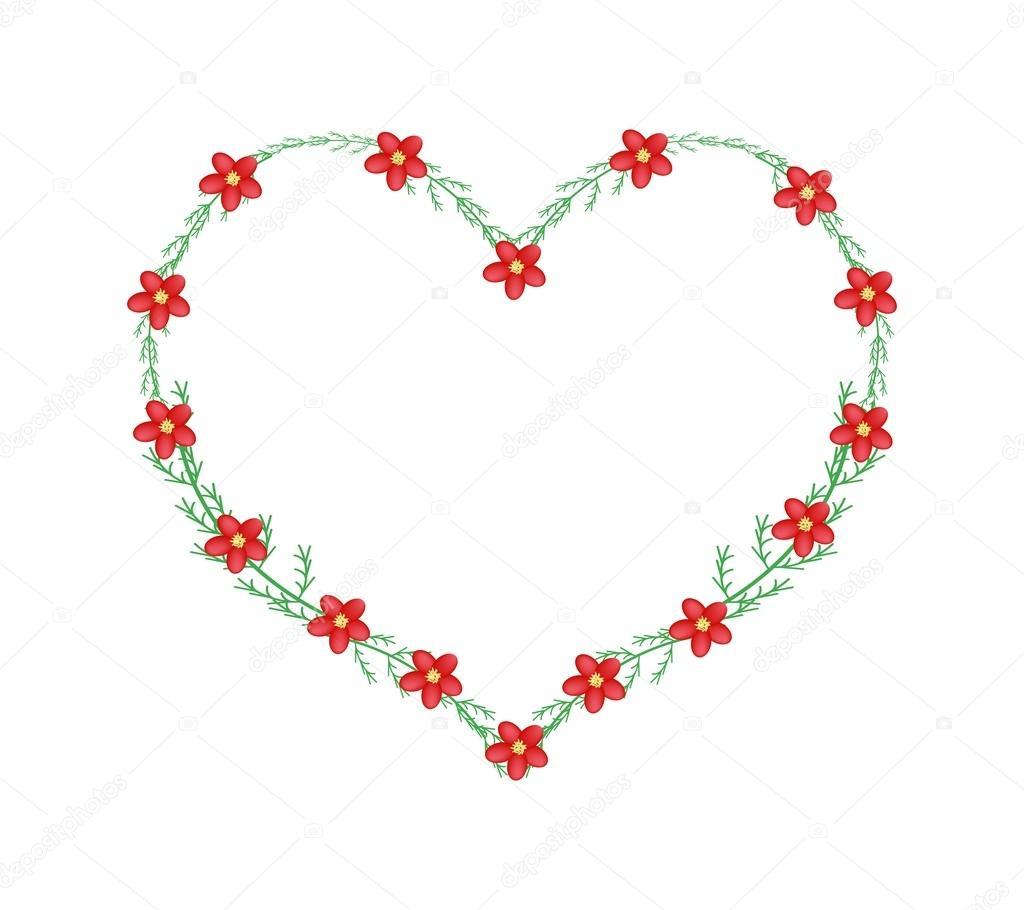 Rote Schafgarbe Blumen in einem Herz-Form-Rahmen — Stockvektor ...