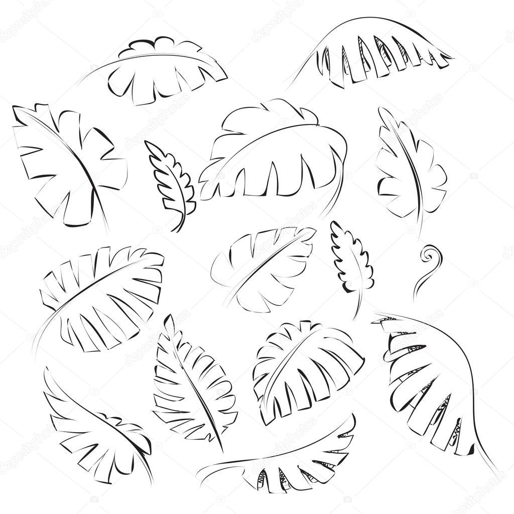 Exotic Leaves Doodle Design Element Stock Vector C Airdone 94358754