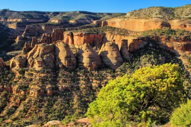 View of Coke Ovens in Colorado National Monument, Grand Junction, USA