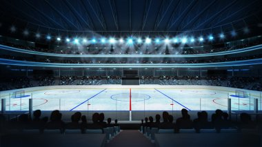Hockey stadium with fans