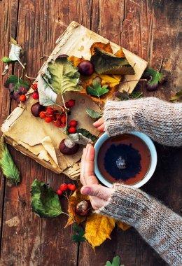 Female hand with a mug of warm autumn tea