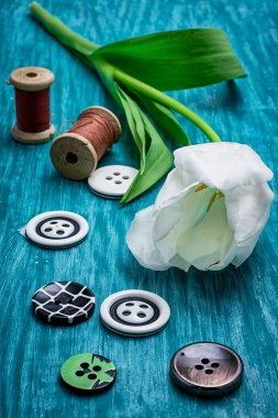 one white tulip and buttons with threads