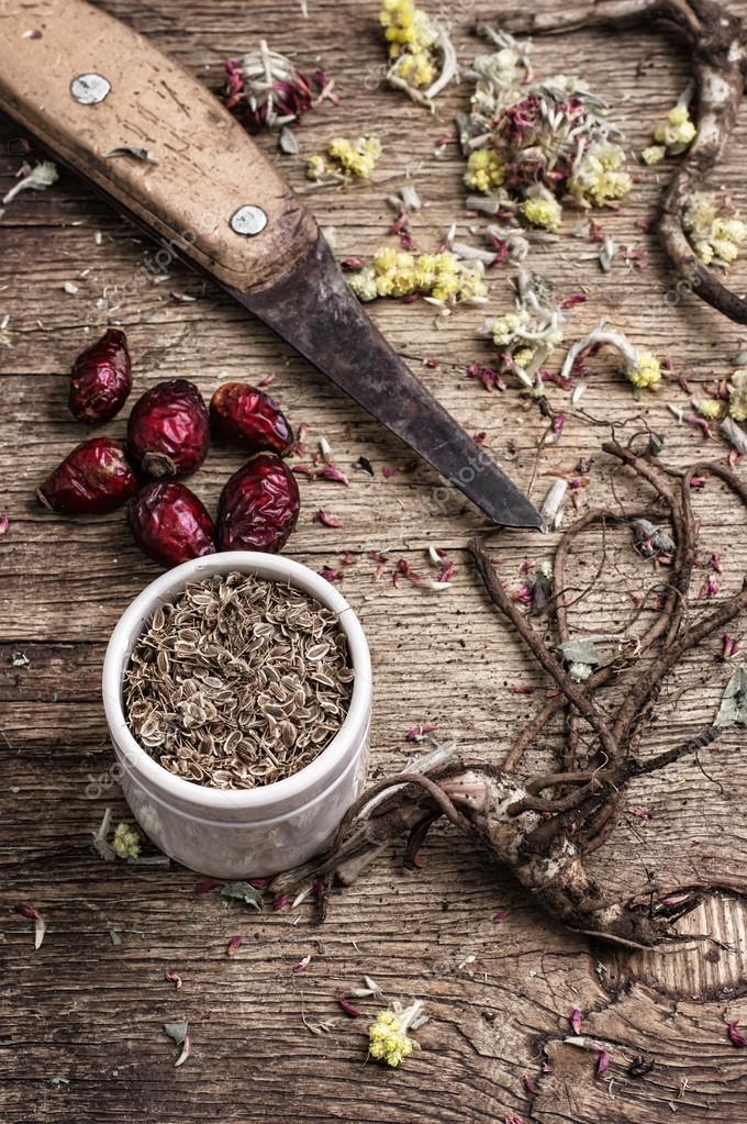 medicinal herbs and roots