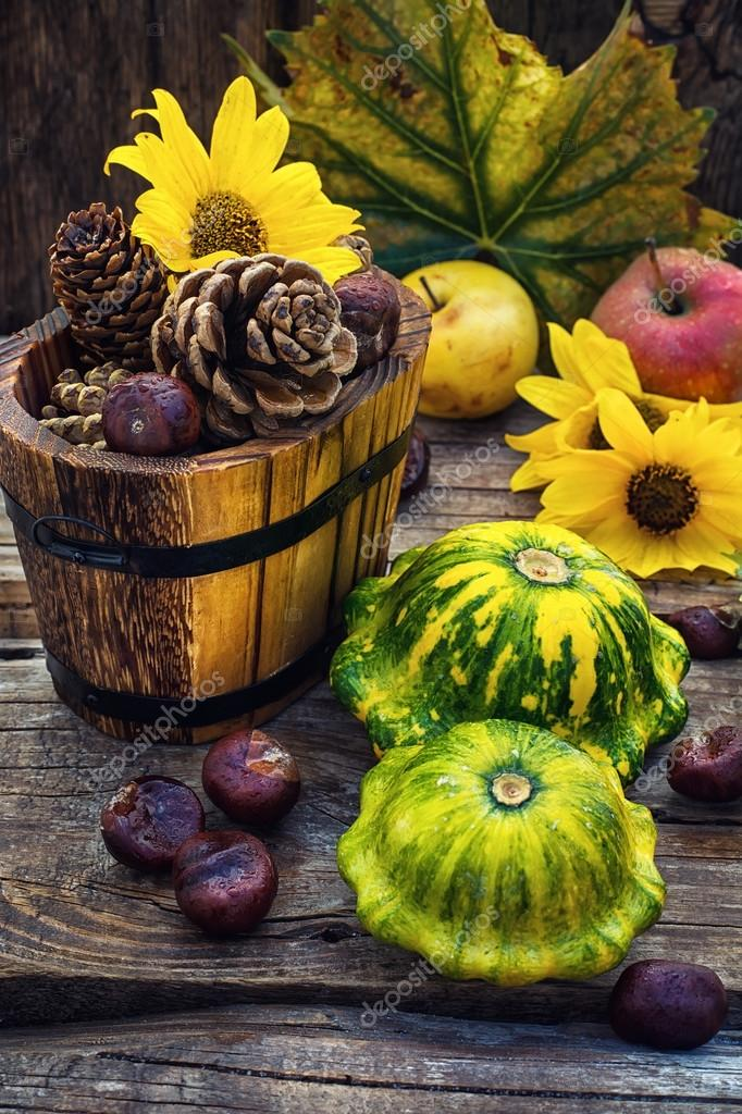 Autumn still life with squash