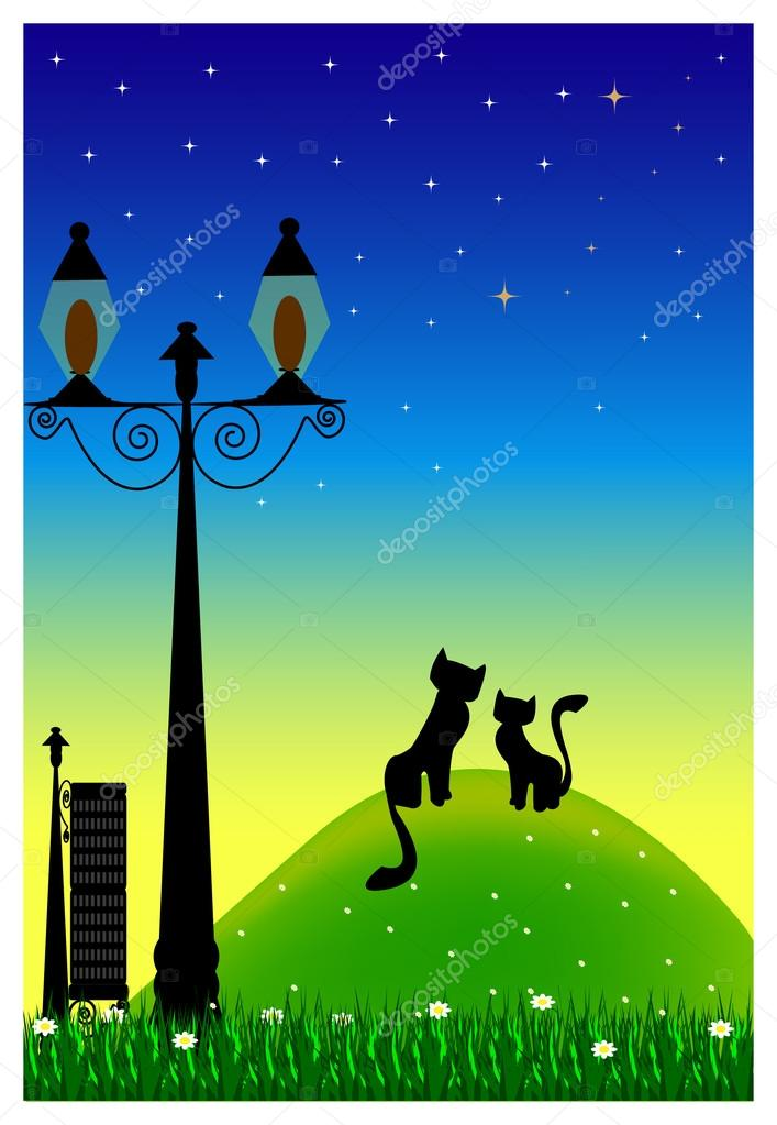 Two cats in park