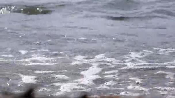 Waves crashing on seashore.