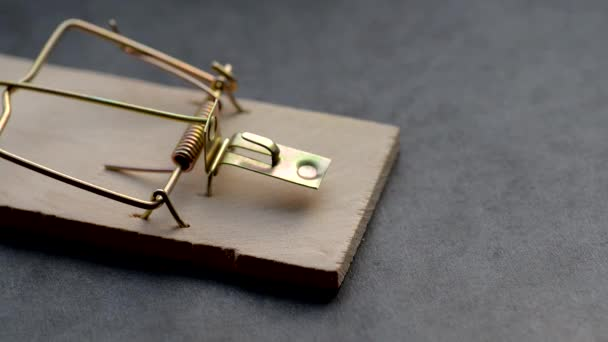 Tests of a mousetrap.