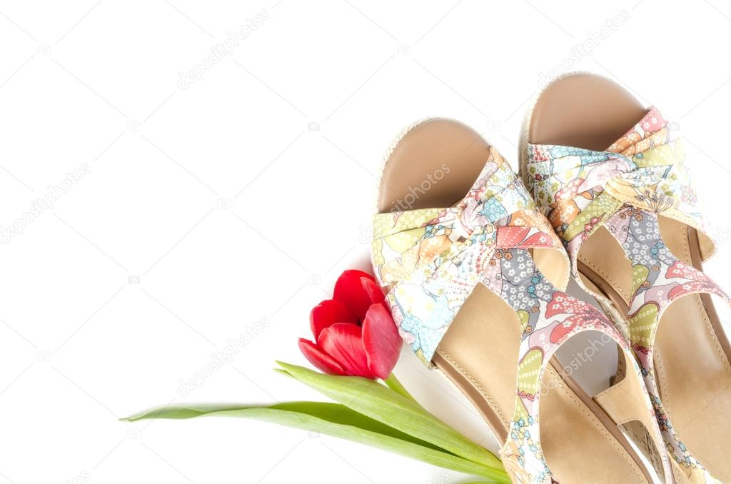 b6597bdb40b Women's Floral Wedge Sandal and a Red Tulip Isolated — Stock Photo ...