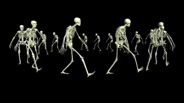Skeleton marching in a circle. Animation footage. 3D animation of skeletons.