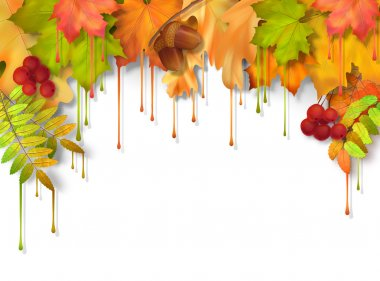 Vector autumn fall leaves with dripping paint, artistic border design on a white background clip art vector