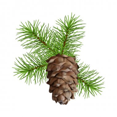 Christmas branch hanging pine cone
