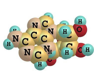 Adenosine molecule isolated on white
