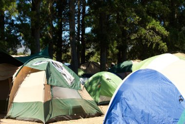 Campsite with many tents