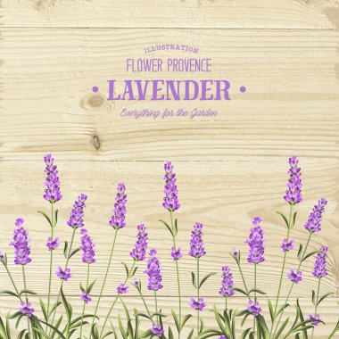 The lavender bouquet.