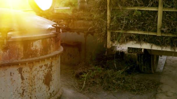Steam distillation machine.