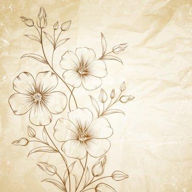 Linum flower