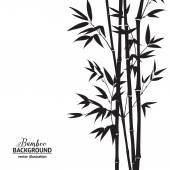 Fényképek bambusz bush
