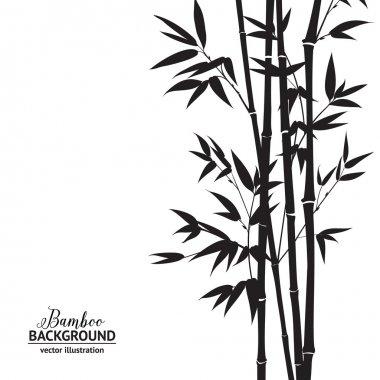 Bamboo bush.