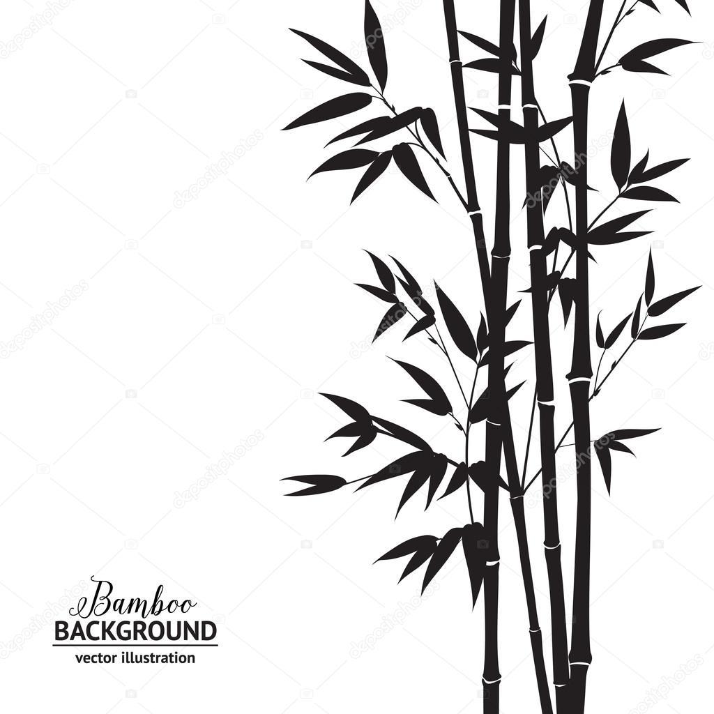 Bambus Busch Stockvektor C Kotkoa 64744113