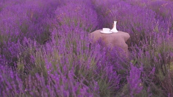 Sklizeň lavender květiny.