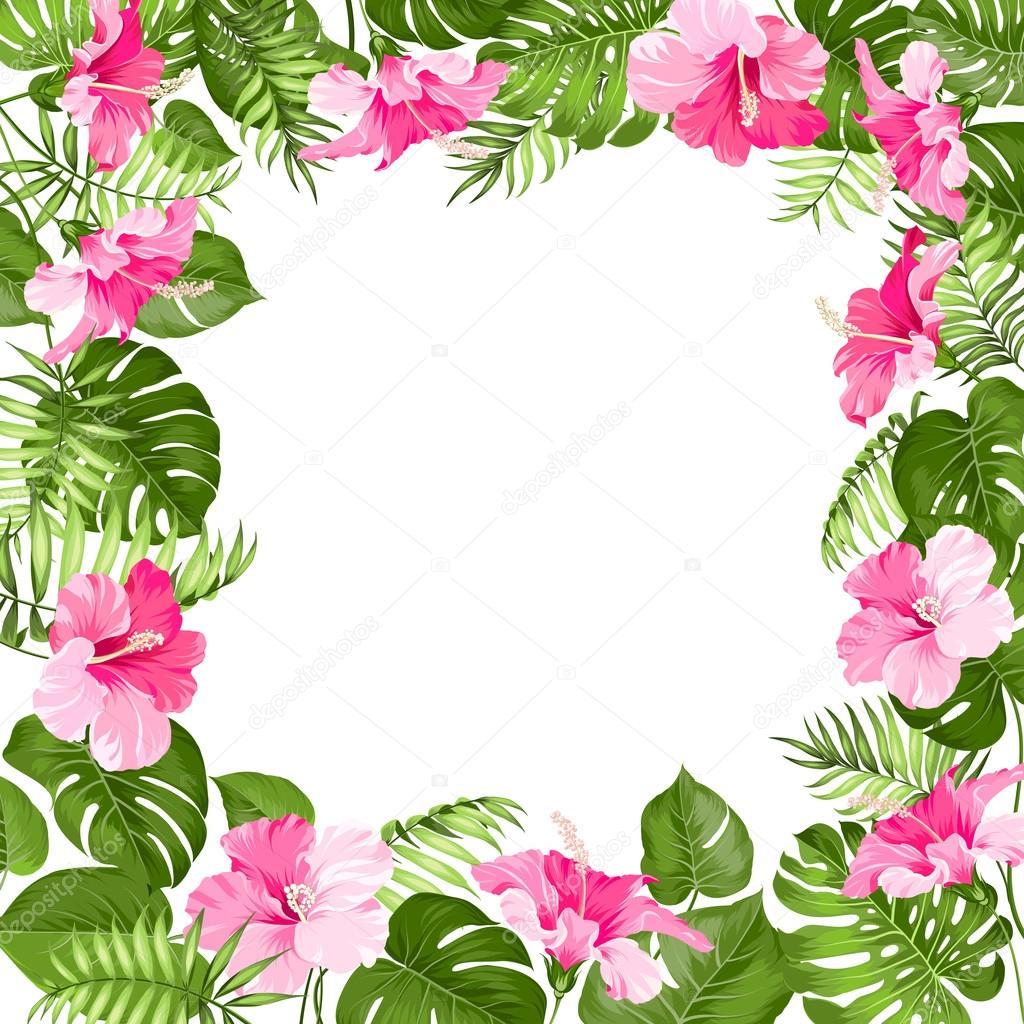 Marco de flores tropicales vector de stock kotkoa - Flores tropicales fotos ...