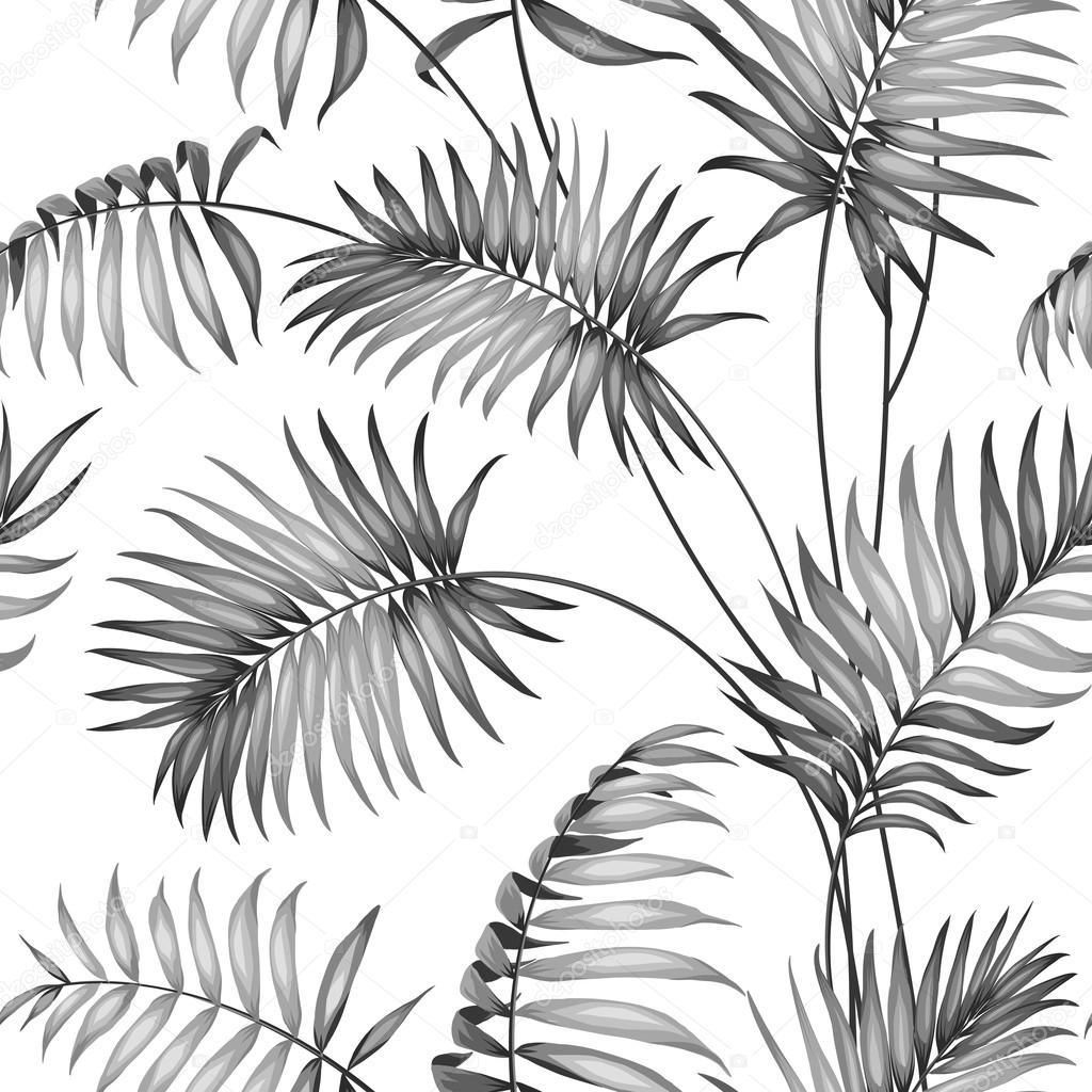 Topical palm leaves.