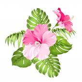 trópusi Virág Koszorú.