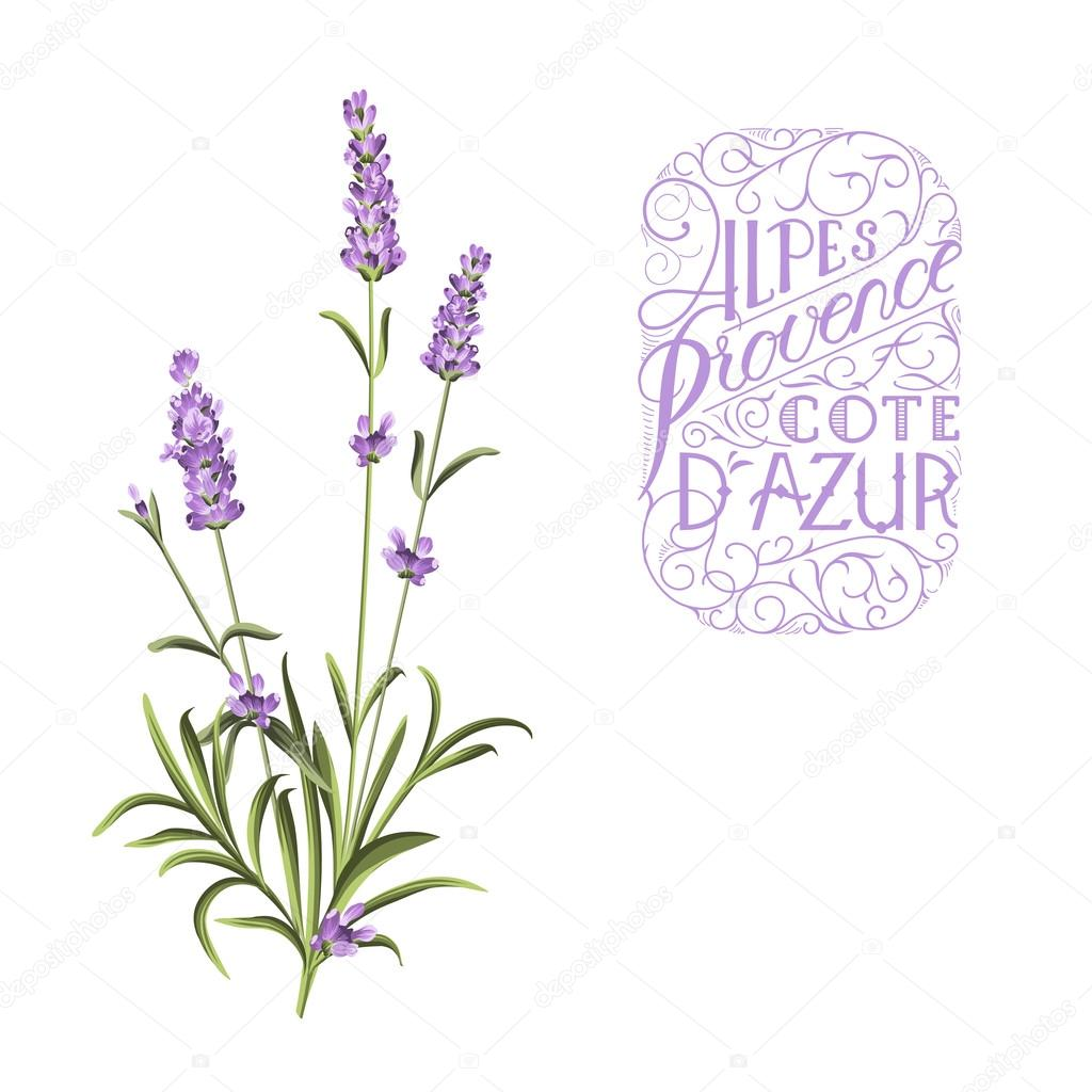 Lavender sign label.