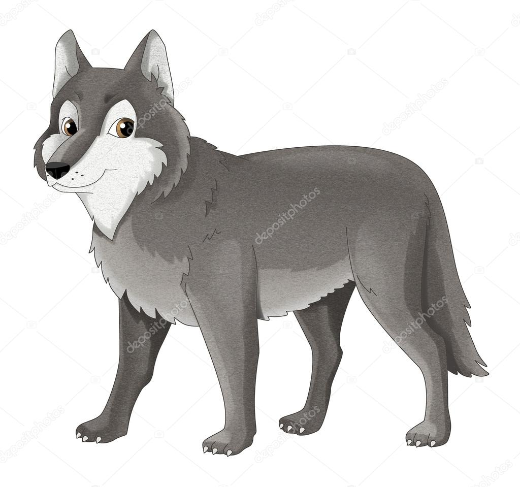 Картинка для детей волк