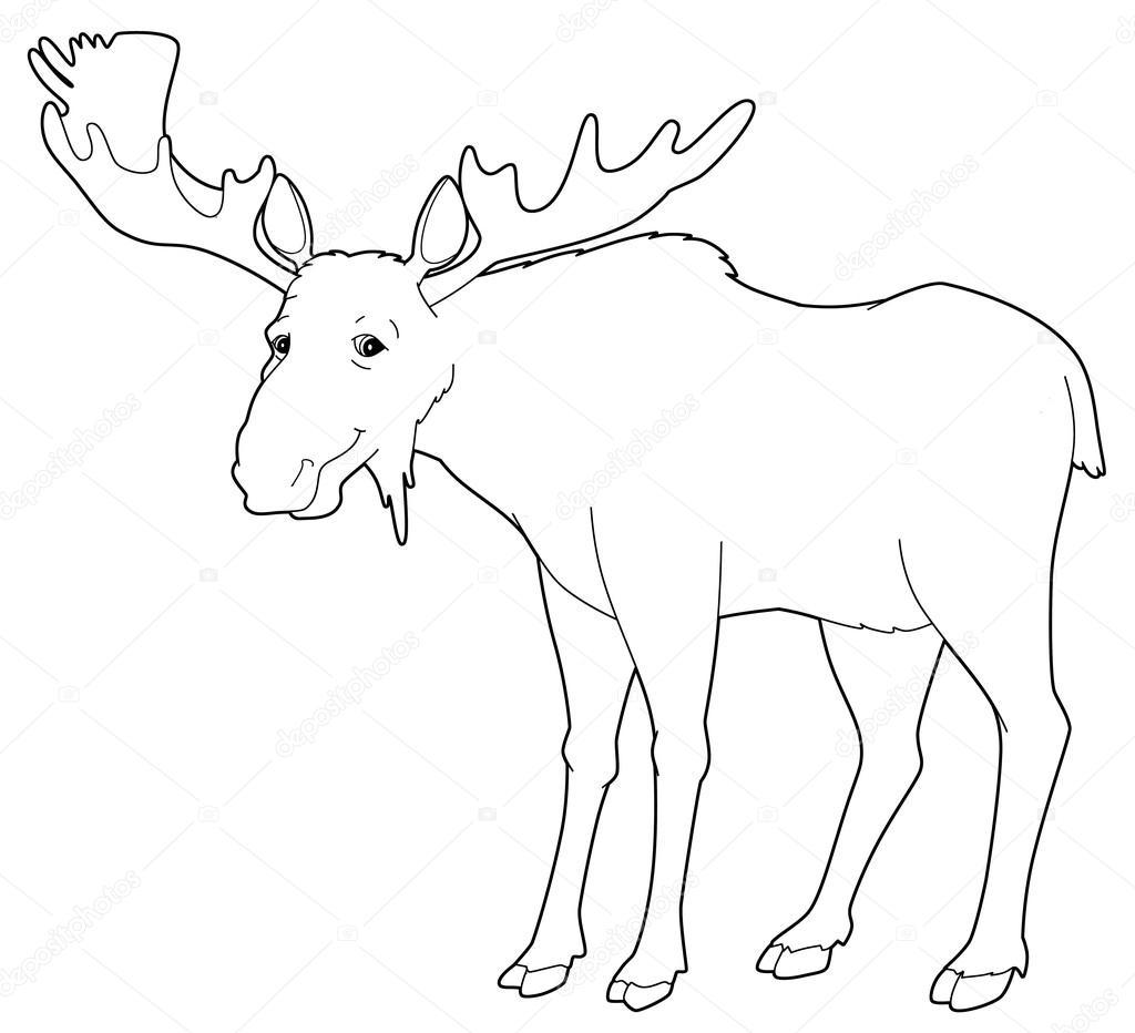 Dibujos animados de animales - alce - aislado - página para colorear ...