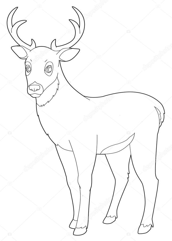 Kleurplaten Dieren Herten.Cartoon Dier Herten Geisoleerd Kleurplaat Pagina Stockfoto