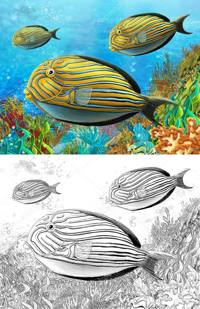 The coral reef - small colorful coral fishes - with coloring page