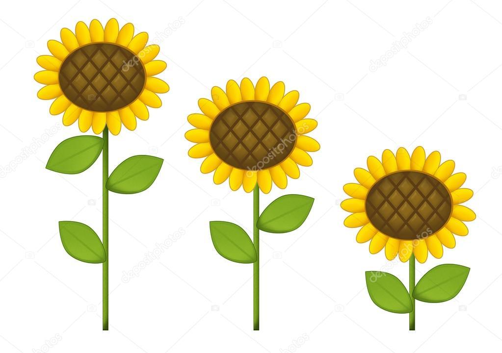 Cartoon Scene With Sunflowers