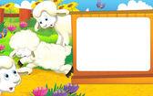 Fotografie Bílá ovce na farmě
