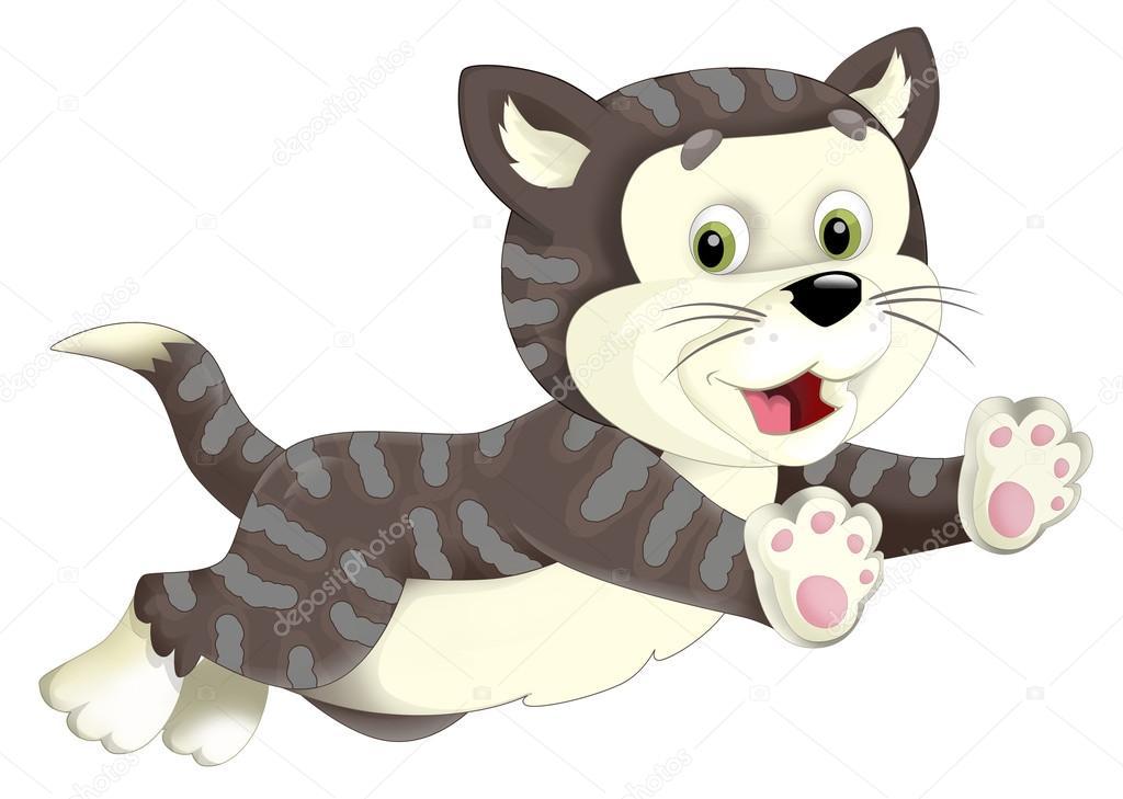 Image Of Animation Cat
