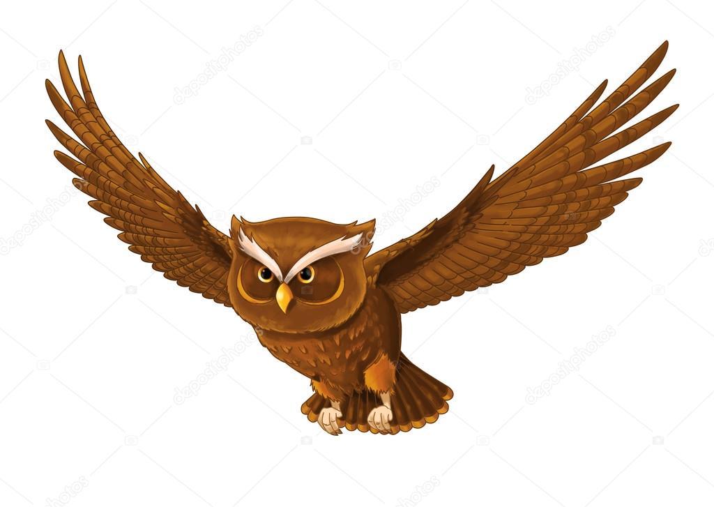 Pássaro De Desenhos Animados