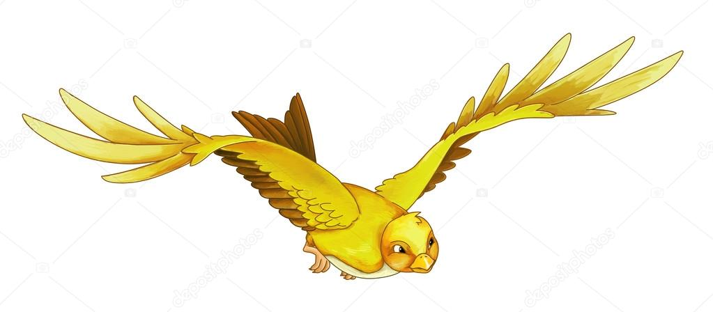 Cartoon Exotic Colorful Bird Flying Stock Photo