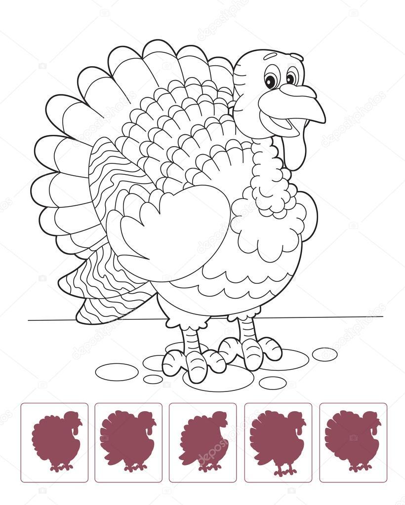 Cartoon Türkei - Malvorlagen mit passenden Schatten — Stockfoto ...
